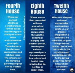 The houses