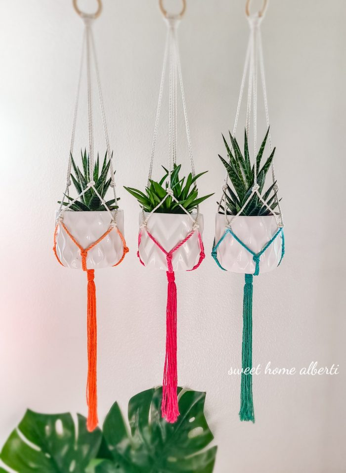 Ombre plant hanger by Sweet Home Alberti
