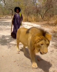 The 'king' and 'queen' taking a walk on the plains of Senegal 🇸🇳