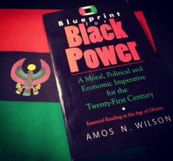 """""""Blueprint for Black Power: A Moral, Political, and Economic Imperative for the Twenty-Fir ..."""