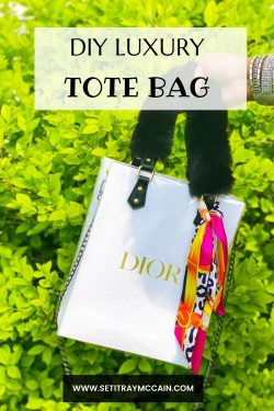 DIY LUXURY PURSE | DIOR SHOPPING BAG | Luxury Purse Review