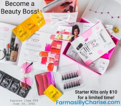 Beauty Boss Starter Kit