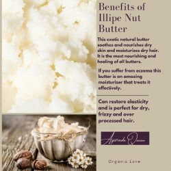 The Best Body Butter Ever