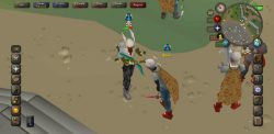 I believe that RuneScape should include both day and nigh